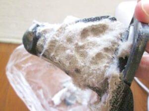 アイリスオーヤマ布団クリーナーIC-FAC4を使って取れたゴミ